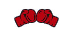 Videsu Sports Club - Tu club de boxeo en Tudela